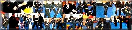 Collage of martial arts training in action
